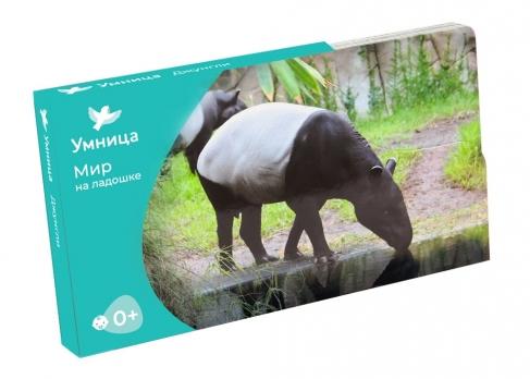 Умница. Мир на ладошке. Джунгли. Развивающие карточки про окружающий мир для малышей от 0 до 5 лет.